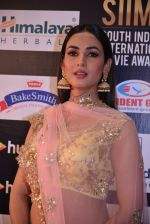 Sonal Chauhan at SIIMA Awards 2016 Red carpet day 2 on 1st July 2016 (34)_57776e7a3a0bc.JPG