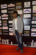 at SIIMA Awards 2016 Red carpet day 2 on 1st July 2016 (155)_57776e0e65f62.JPG