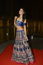 at SIIMA Awards 2016 Red carpet day 2 on 1st July 2016 (196)_57776e296ce1a.JPG