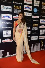 at SIIMA Awards 2016 Red carpet day 2 on 1st July 2016 (216)_57776e3a8424a.JPG