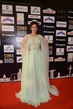 at SIIMA Awards 2016 Red carpet day 2 on 1st July 2016 (230)_57776e468a985.JPG