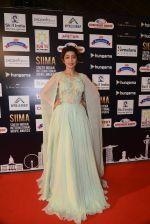 at SIIMA Awards 2016 Red carpet day 2 on 1st July 2016 (231)_57776e475c2b9.JPG