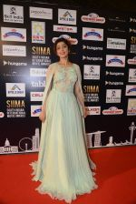 at SIIMA Awards 2016 Red carpet day 2 on 1st July 2016 (232)_57776e481fab6.JPG