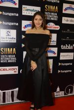 at SIIMA Awards 2016 Red carpet day 2 on 1st July 2016 (248)_57776e4c84548.JPG