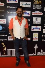 at SIIMA Awards 2016 Red carpet day 2 on 1st July 2016 (250)_57776e4dc9a47.JPG