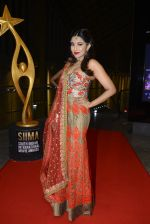 at SIIMA Awards 2016 Red carpet day 2 on 1st July 2016 (262)_57776e524f35d.JPG