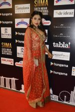 at SIIMA Awards 2016 Red carpet day 2 on 1st July 2016 (267)_57776e55b8dd0.JPG