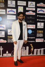 at SIIMA Awards 2016 Red carpet day 2 on 1st July 2016 (287)_57776e5819c68.JPG
