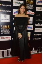 at SIIMA Awards 2016 Red carpet day 2 on 1st July 2016