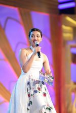 SIIMA Awards 2016 (47)_577b2d8471609.JPG