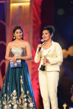 SIIMA Awards 2016 (74)_577b2dbe05f38.JPG