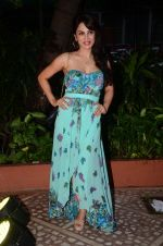 Smita Gondkar at Golden Camera Awards in Mumbai on 9th July 2016 (28)_5781b9b044dd2.JPG