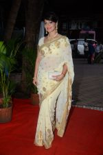 at Golden Camera Awards in Mumbai on 9th July 2016 (8)_5781b95d67b5d.JPG