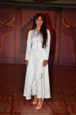 Sunita Gowariker at Mohenjo Daro film launch in Mumbai on 12th July 2016 (33)_578532b63f4ba.JPG