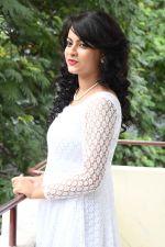 Aathidi (34)_57875c1a3aa9b.jpg