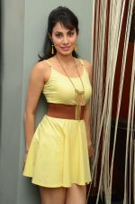 Manisha Kelkar (43)_5787cd1942d34.jpg