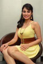Manisha Kelkar (47)_5787cd3387159.jpg