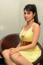 Manisha Kelkar (48)_5787cd3929b35.jpg