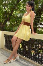 Manisha Kelkar (65)_5787ce02977f7.jpg
