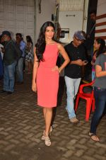 Pooja Hegde at Mohenjo Daro interview on 13th July 2016