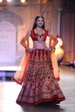 Divya Khosla Walks For Reynu Taandon at the FDCI India Couture Week 2016 (40)_57922c223c4c1.JPG