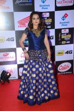 Jaya Prada at Mirchi Music Awards 2016 on 27th July 2016 (50)_579994bea4100.JPG