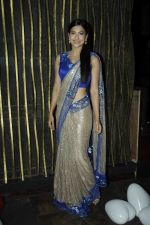 Gauhar Khan at the red carpet of the post wedding celebrations of Sambhavna & Avinash at Bora Bora_579b85354a0bf.JPG