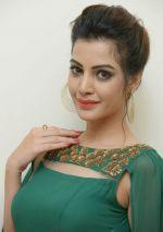 Diksha Panth Photoshoot (1)_579d9ffa65883.jpg