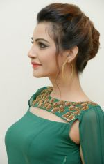 Diksha Panth Photoshoot (11)_579da05a0b119.jpg
