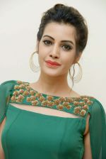 Diksha Panth Photoshoot (12)_579da0610682d.jpg