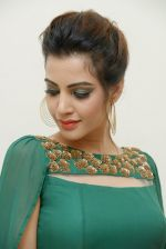 Diksha Panth Photoshoot (14)_579da0712529b.jpg