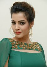 Diksha Panth Photoshoot (15)_579da07b21bab.jpg