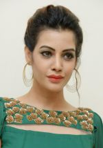 Diksha Panth Photoshoot (16)_579da081f2a0b.jpg