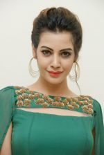 Diksha Panth Photoshoot (18)_579da09d0ae21.jpg