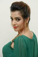 Diksha Panth Photoshoot (22)_579da0c87a1f0.jpg