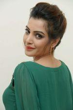 Diksha Panth Photoshoot (23)_579da0d0c3e6d.jpg