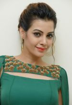 Diksha Panth Photoshoot (26)_579da0f00b5c5.jpg