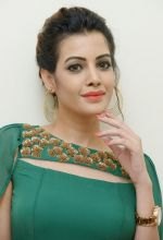 Diksha Panth Photoshoot (28)_579da100ae311.jpg