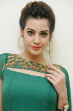 Diksha Panth Photoshoot (29)_579da10895720.jpg