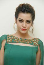 Diksha Panth Photoshoot (3)_579da00bc1828.jpg