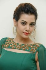 Diksha Panth Photoshoot (30)_579da10e5f7f2.jpg