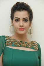 Diksha Panth Photoshoot (31)_579da118ae75c.jpg