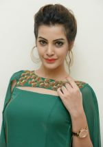 Diksha Panth Photoshoot (4)_579da012a7a02.jpg