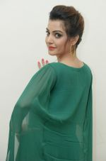 Diksha Panth Photoshoot (40)_579da148029d9.jpg