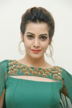 Diksha Panth Photoshoot (6)_579da02332b3a.jpg