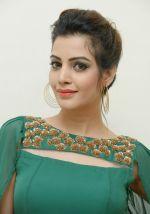 Diksha Panth Photoshoot (7)_579da02bd38a9.jpg