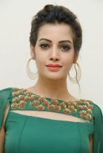 Diksha Panth Photoshoot (9)_579da0466dc2c.jpg