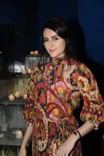 Mandana Karimi at Pria Kataria Puri_s fashion preview on 3rd Aug 2016 (63)_57a2c532e2819.JPG