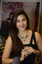 at Jaipur Jewels Myga launch on 3rd Aug 2016 (25)_57a2ba51196e8.JPG
