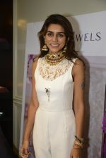 at Jaipur Jewels Myga launch on 3rd Aug 2016 (13)_57a2ba4a575bf.JPG